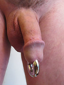 A picture of my cock with cock ring
