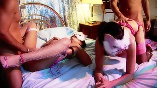 Dark-haired twin babes with masks of the slutty kitties are wild in a 4some bang